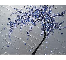 blue and purple blossom tree Photographic Print
