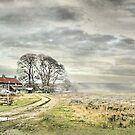 Farm In The North York Moors by patrixpix