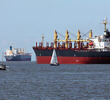 Like Islands, the Massive Cargo Vessels Sat by Wolf Read