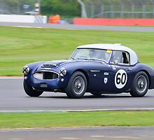 Austin Healey No 60 by Willie Jackson