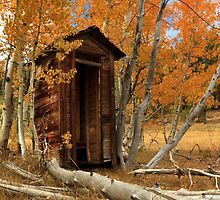 Outhouse In The Aspens by James Eddy