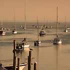 Pink Sundown at the Marina by Margie Avellino