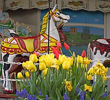 The Carousel by cherylc1