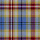 02402 Pinellas County, Florida District Tartan Fabric Print Iphone Case by Detnecs2013