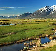 Job's Peak Carson Valley by James Eddy