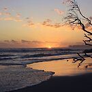 kingscliff beach sunrise ... by gail woodbury by PhotoCo-Op