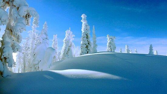 Snowshoeing at Hurricane Ridge by William Newland