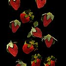 strawberries by RusticShiraz