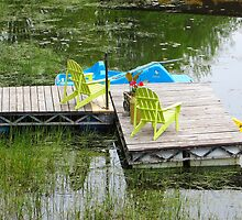 A Seat by the Swamp by Sandra Fortier