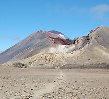 Martian Landscape by Glenn Formoy