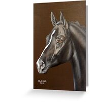Sandhurst, Oldenburg Stallion Greeting Card