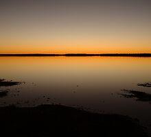Joe Mortelliti Gallery - Lake Caroline, north Simpson Desert, Northern Territory, Australia. by thisisaustralia