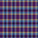 02419 Prince George's County, Maryland District Tartan Fabric Print Iphone Case by Detnecs2013