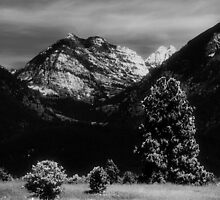Mission Mountains by violettrout