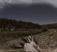 """ Fawnskin, the backside of Big Bear Lake California "" by CanyonWind"