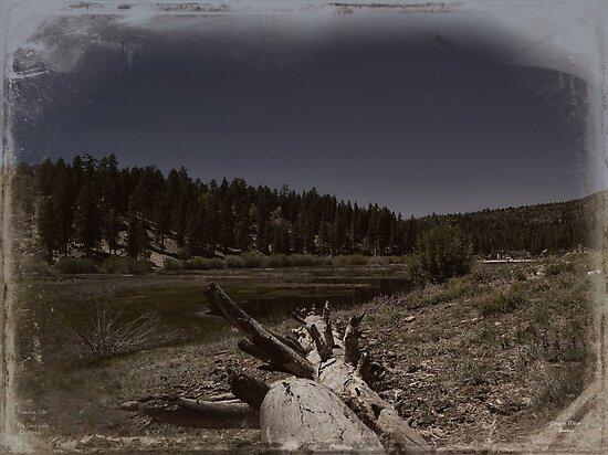 """ Fawnskin, the backside of Big Bear Lake California "" by CanyonWind"