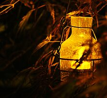 A Lantern In The Night II by Tracy Jones