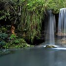 Sydney Waterfalls - Berowra Creek by vilaro Images