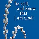 Be Still and Know ~ Psalm 46:10a by Robin Clifton