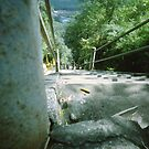 Ant's Stare Down the Stairs - Lomo by Yao Liang Chua