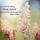 Holy Spirit by smilingrain