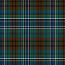 02420 Duval County, Florida District Tartan Fabric Print Iphone Case by Detnecs2013