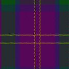02423 Discover Islay District Tartan Fabric Print Iphone Case by Detnecs2013