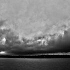 Brawling of a Storm: Dallas by Rafiul Alam