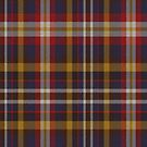 02435 Collin County, Texas District Tartan Fabric Print Iphone Case by Detnecs2013