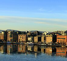 Oslo by evolutionx