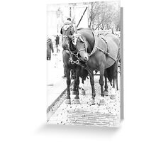 horse and carriage Greeting Card