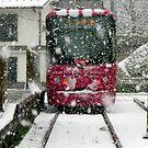 A Streetcar in Pink by kibishipaul