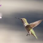 Humming with soft background by Meeli Sonn