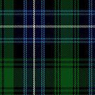 02445 Dorris Tartan Fabric Print Iphone Case by Detnecs2013