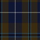 02453 Douglas (Brown) Clan/Family Tartan Fabric Print Iphone Case by Detnecs2013