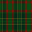 02466 Doyle Tartan Fabric Print Iphone Case by Detnecs2013