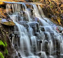 Albany Rural Cemetery Waterfalls by DJ Fortune