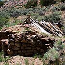 Old Stone Cabin,near Moon Rocks,Reno Nevada USA by Anthony & Nancy  Leake