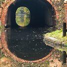 Drakeholes by John Dunbar