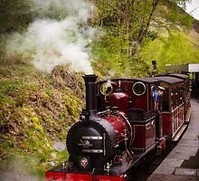 Steam Locomotive Dolgoch by mlphoto