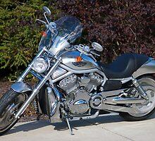 2003 Harley Davidson VRSCA V-Rod 100th Anniversary Motorcycle by Susanne Finke