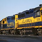 Alaska Railroad by Robert Phelps