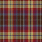 02508 San Joaquin County, California E-fficial Fashion Tartan Fabric Print Iphone Case by Detnecs2013