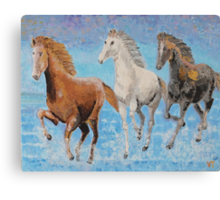 Horses from Troy Canvas Print