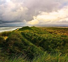 Storm over the Dunes by Barbara  Brown
