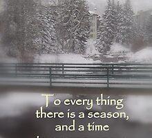 Ecclesiastes 3:1 by Tamra Kean