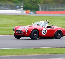 AC Cobra No 75 by Willie Jackson