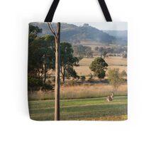 Kangaroos with their Joey -Vacy, NSW Australia Tote Bag