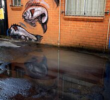 fish in a puddle by SharronS