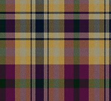 02522 Jackson County, Missouri E-fficial Fashion Tartan Fabric Print Iphone Case by Detnecs2013